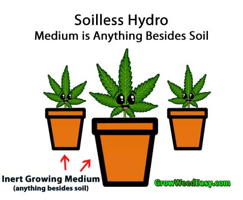 Is it better to grow cannabis in soil or hydro? | Grow Weed Easy