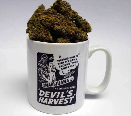 Liberty Haze in a cup showing off some old marijuana scare tactics