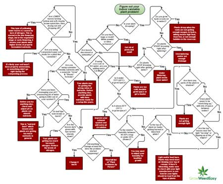 Click here for a cannabis problem-solving flowchart