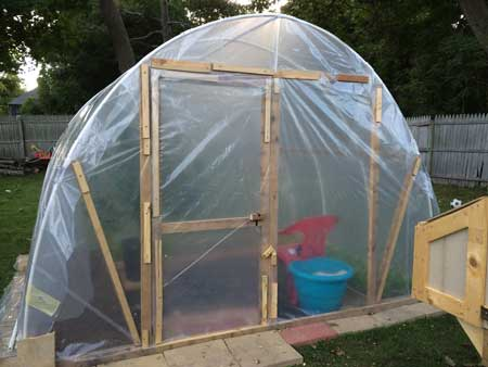 Use plastic tarp to cover the greenhouse