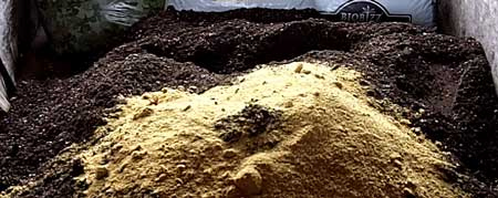 What soil looks like after adding Fish Bone Meal