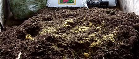 What cannabis super soil pile looks like after Fish Bone Meal is lightly mixed in