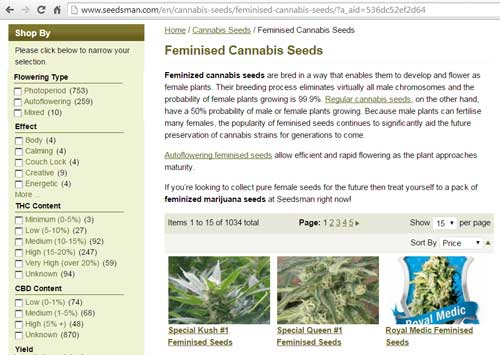 Strain selector page on Seedman website