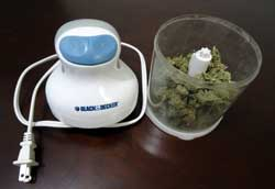 Lightly grind up cannabis, in this case using a food processor