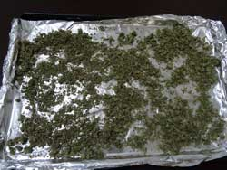 Sprinkle the ground up bud over your cookie sheet so it's all spread out