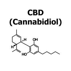 CBD (Cannabidiol) is a cannabinoid found in Medical Marijuana which may offer relief for some symptoms including anxiety and seizures