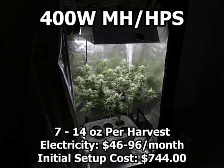 A 400 watt High Pressure Sodium/Metal Halide light growing some cannabis