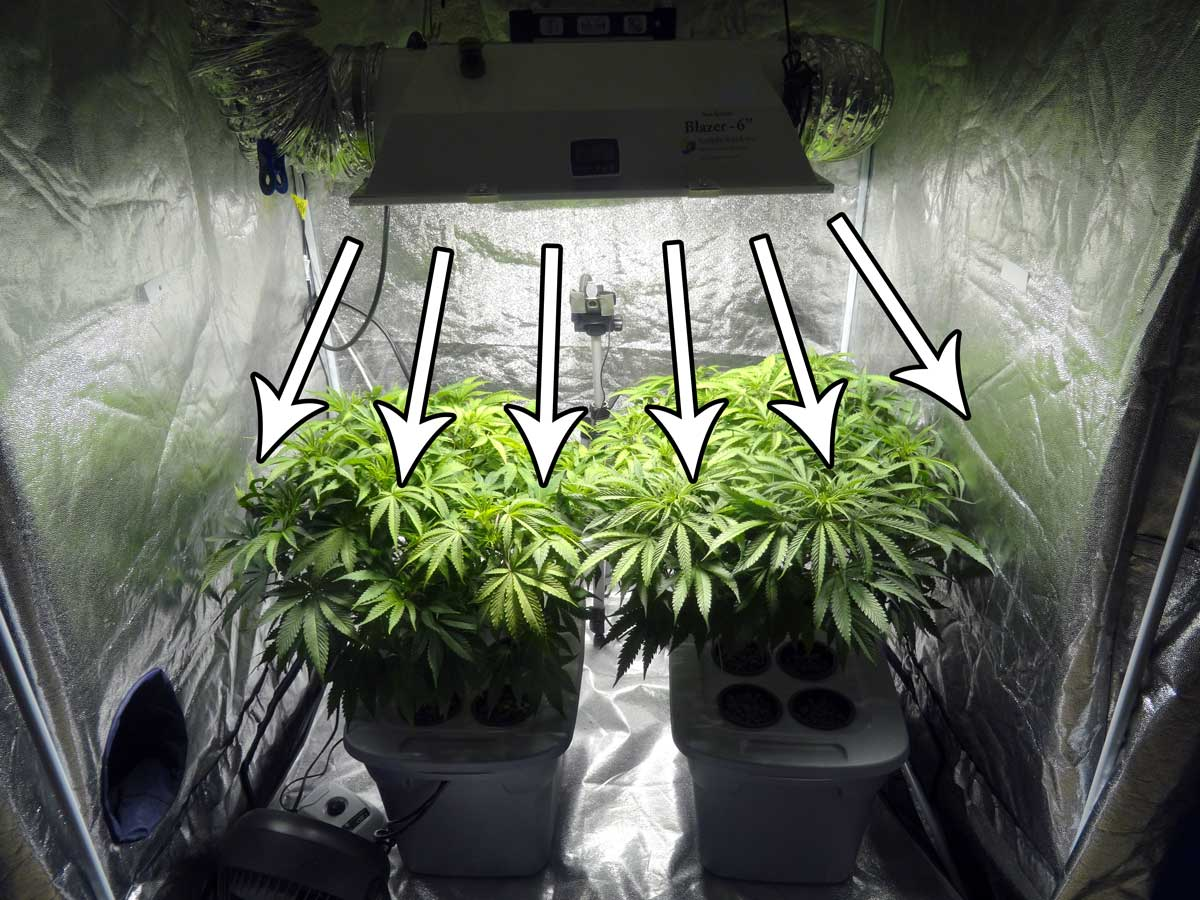 Which Reflector Is Best For My Mh Hps Grow Light Grow