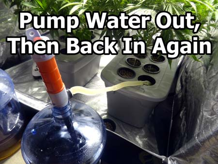 To give plant roots a boost of oxygen, pump all the reservoir out, then pump it back in again