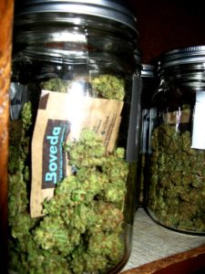 Example of buds being stored with a Boveda Humidipak