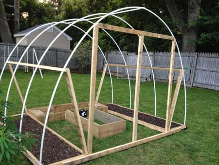 Example of a home-made cannabis greenhouse that could be used to be a blackout tent for the light deprivation technique