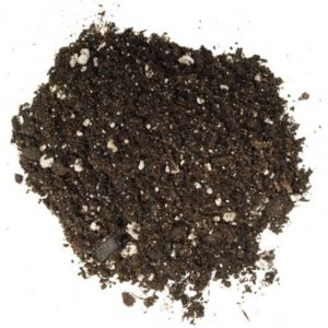 Example of great cannabis soil