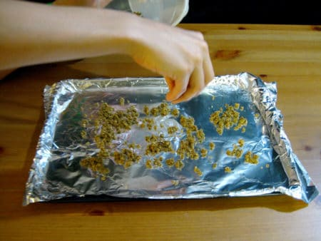 Ground up cannabis being spread out on a baking sheet