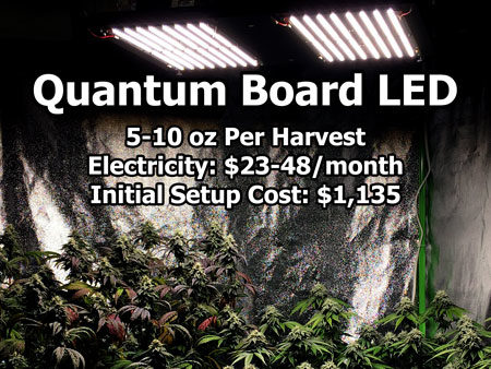 Example of an HLG Quantum Board LED grow light setup (with estimated yields, electricity, and initial setup cost)