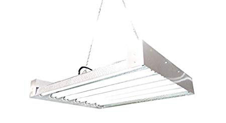 Get this T5 Grow Light on Amazon.com