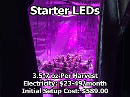 Starter LEDs - cannabis setup example that uses a small LED grow light