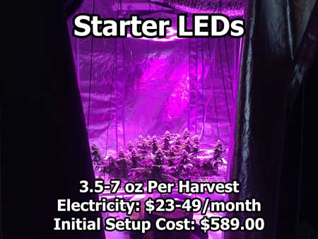Cannabis Grow Light Breakdown Heat Cost Amp Yields Grow