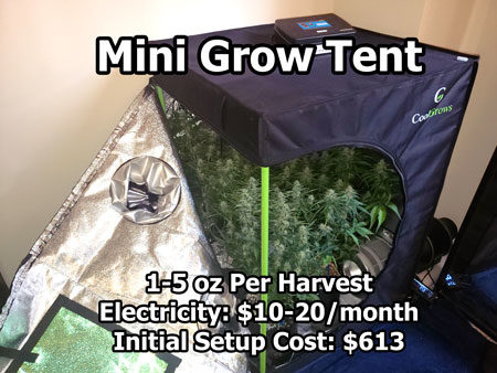 Example of a mini grow tent setup with an HLG 100 Quantum Board LED grow light for microgrows
