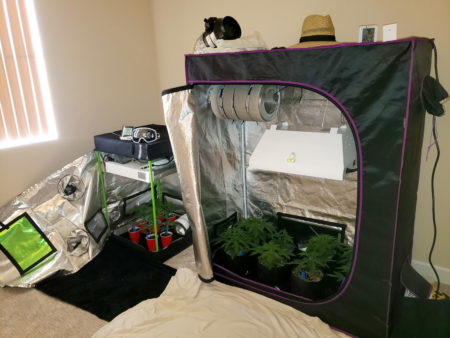 When you have multiple grow tents at once, it allows you to easily create multiple separate grow spaces