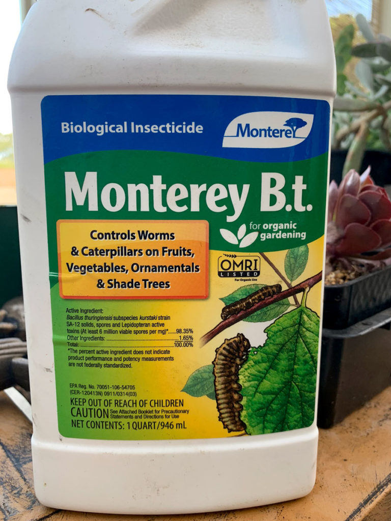 "Any ""BT"" product like Monteray BT spray is the best way to get rid of cannabis caterpillars"
