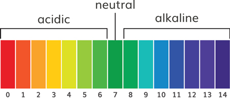 Chart of pH alkaline and acidic scale - Prevent cannabis deficiencies with the right pH at the roots