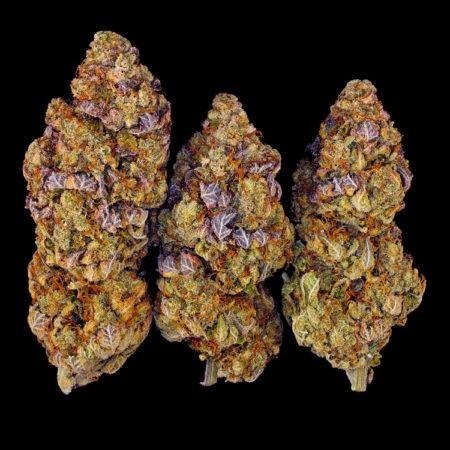 Why you should grow marijuana in 2021
